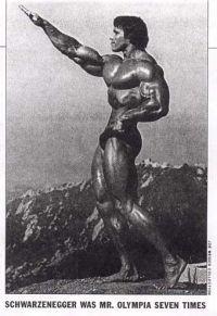 http://www.bartcop.com/arnold-nazi-salute.jpg