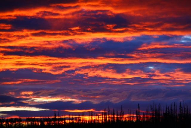 http://www.bartcop.com/astrocat-yukon-river-sunrise.jpg