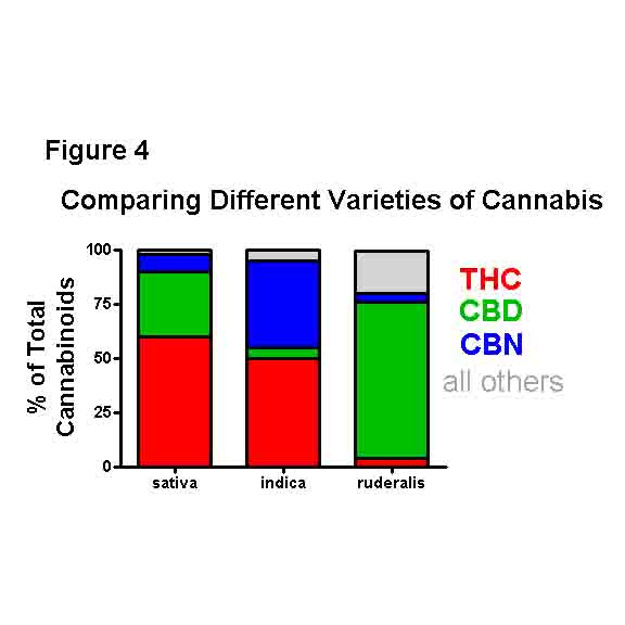 Keynote Review Medicinal Chemistry Strategies To Cb1 Cannabinoid Receptor Antagonists
