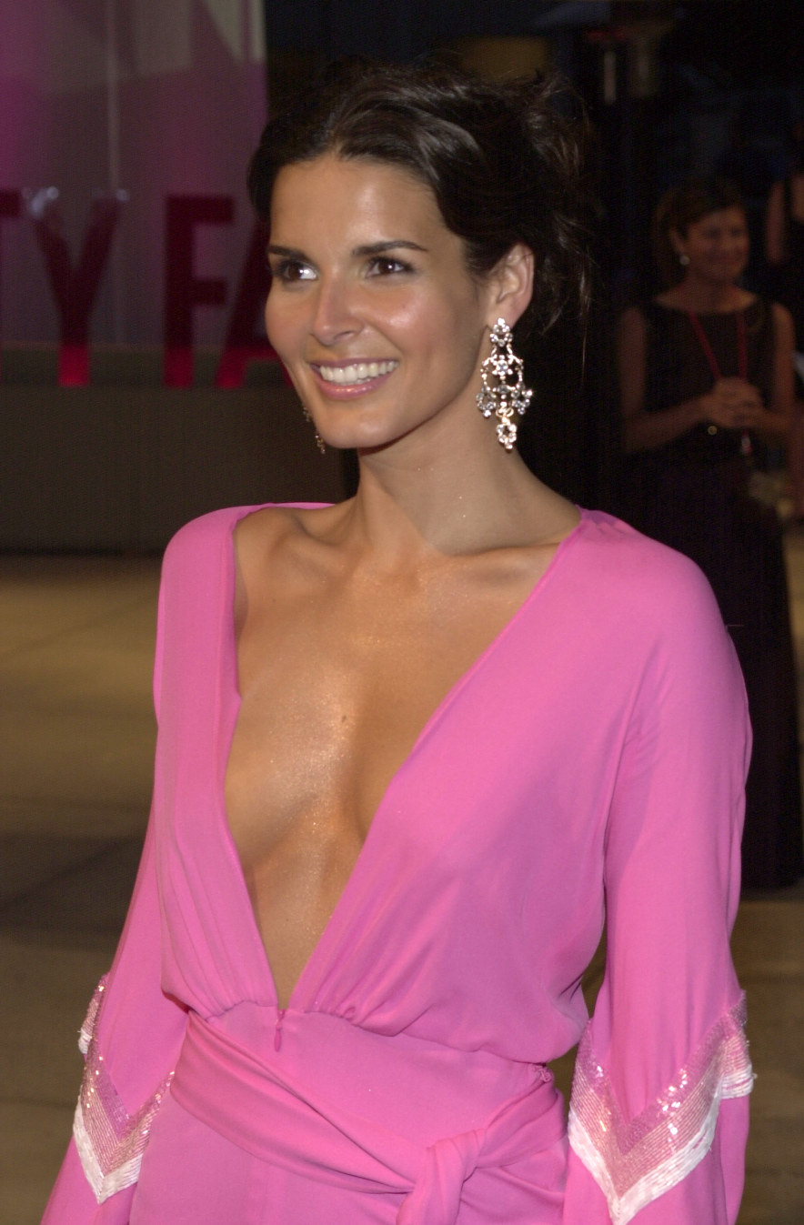 bartcop s tv hotties   angie harmon   page 424