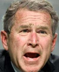 bush-scared-hex.jpg