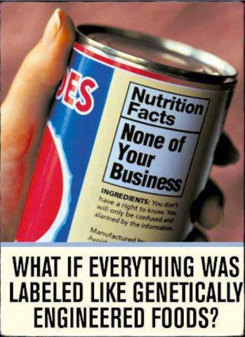 gen-foods-babels-biz.jpg
