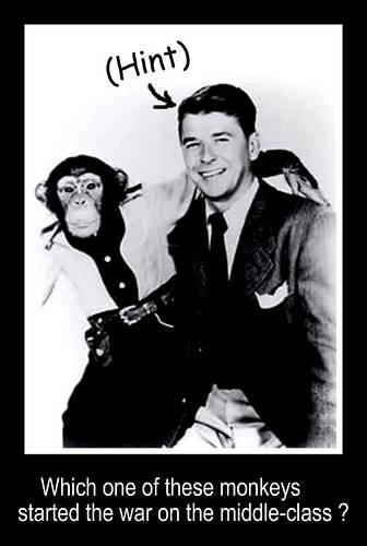 regan and monkey