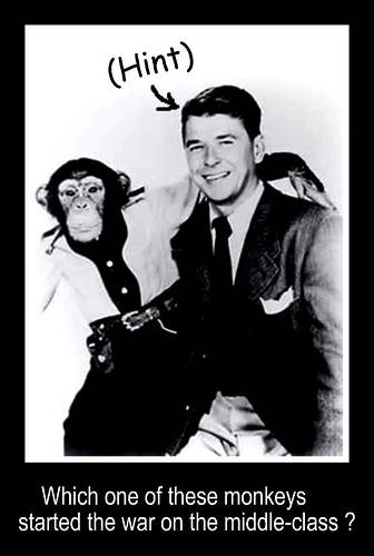 regan and monkey
